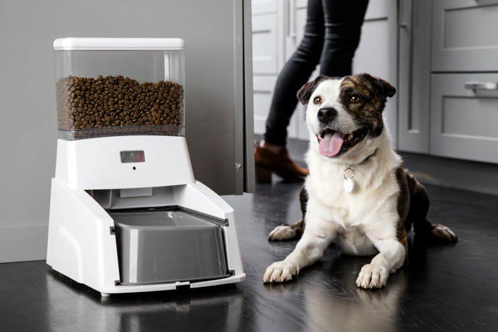 Автокормушка для собак