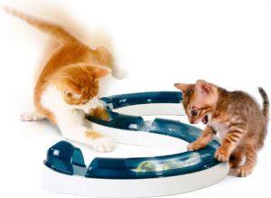 Трек-игрушка для кошек