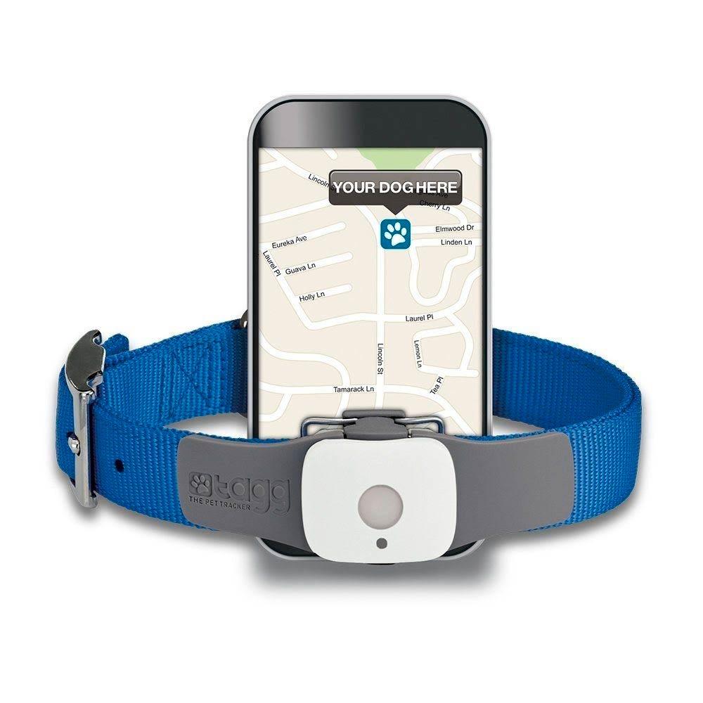 GPS трекеры для животных