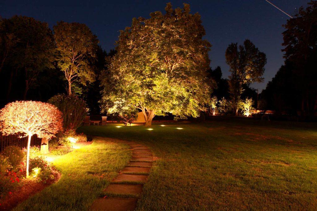 Уличное освещение деревьев и кустарников